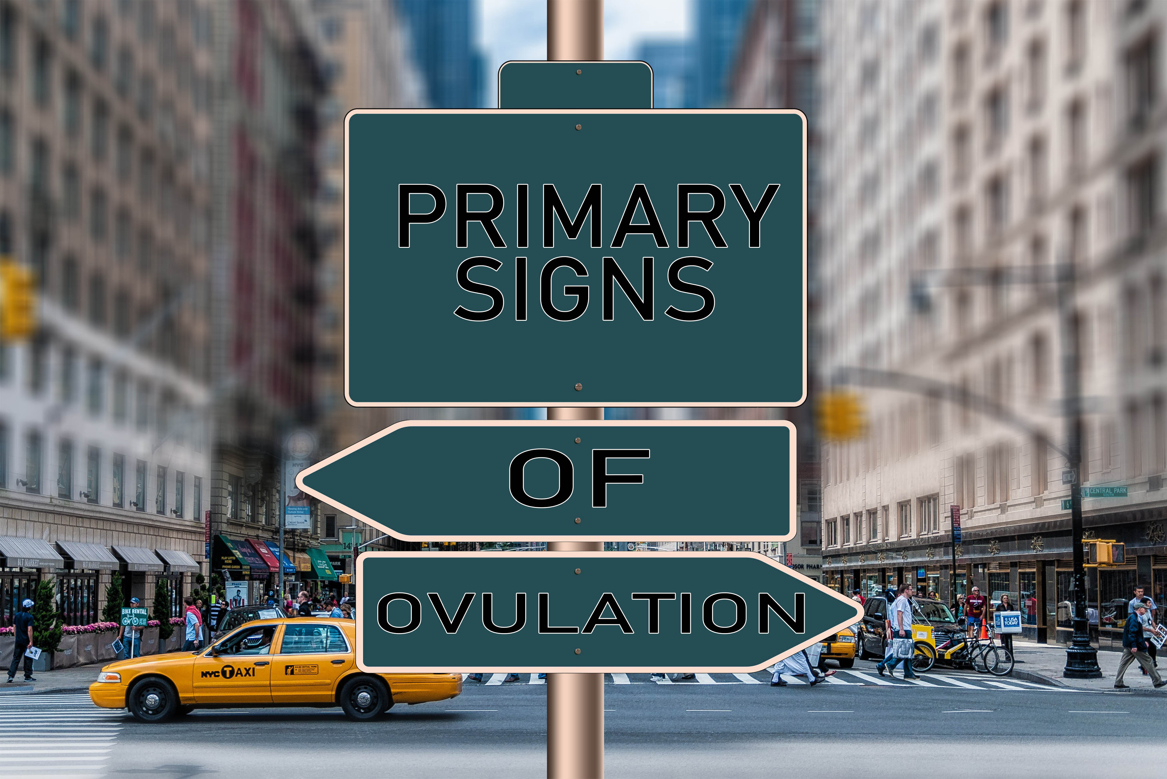 PRIMARY SIGNS OF OVULATION