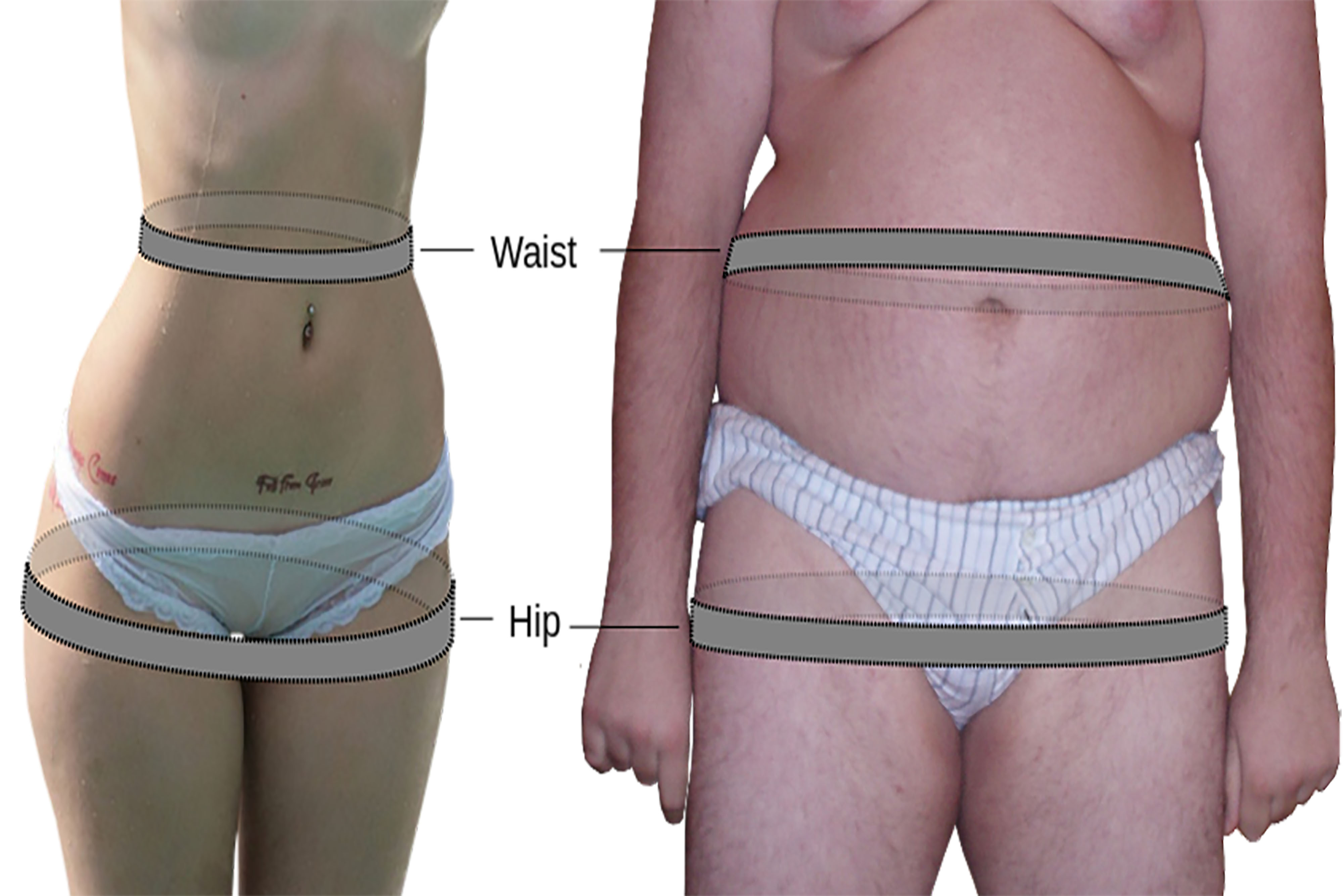WAIST HIP RATIO: WHAT IT SAYS ABOUT YOUR HEALTH?